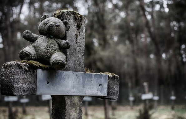 Picture cross, bear, cemetery