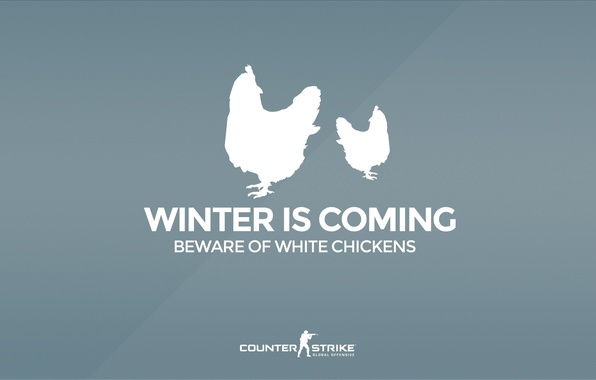 """Picture CS GO, Counter Strike Global Offensive, Серия """"CS GO Situation"""", Beware of white chickens, Winter …"""