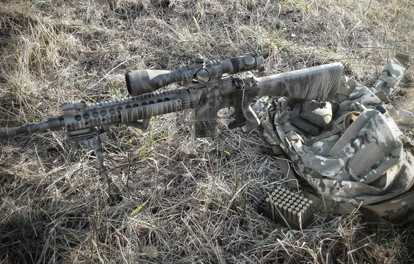 Picture grass, weapons, bag, rifle, sniper, Mk 12
