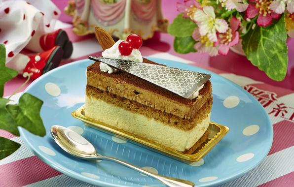Picture berries, chocolate, cake, dessert, decor, biscuit