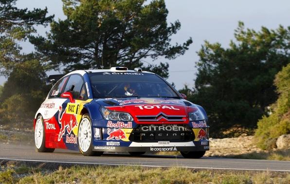 Picture Auto, Machine, Citroen, Citroen, Red Bull, WRC, Rally, The front