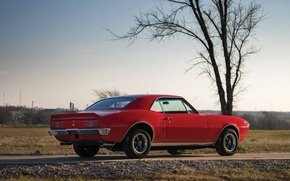 Picture red, Pontiac, 1967, american, musclecar, firebird, 400