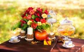 Picture autumn, leaves, flowers, coffee, roses, candles, picnic