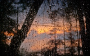Picture glass, water, drops, window, after the rain