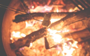 Picture fire, the fire, fire, wood, marshmallows, flames, outdoors, camping, bonfire, logs, roasting, marshmallows, Sarki