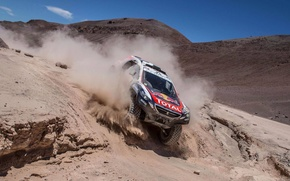 Picture mountains, dust, 2008, Peugeot, Rally, Dakar, DKR, baggy
