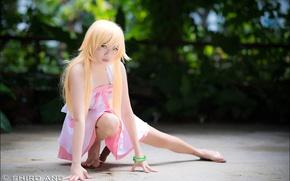 Picture girls, cosplay, Bakemonogatari, The Shinobu Oshin, by shiroang