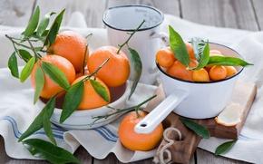 Picture leaves, drops, dishes, Board, fruit, orange, citrus, napkin, tangerines, the kumquats, Anna Verdina