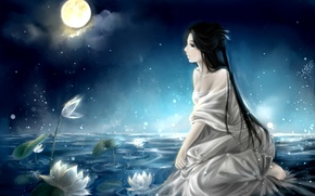 Picture art, water lilies, anime, the moon, lake, girl, night, the sky, clouble, clouds
