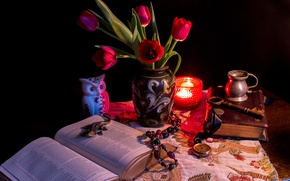 Picture flowers, table, owl, candle, tulips, book, book, Tulips, Candles