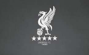 Picture Liverpool, Liverpool FC, YNWA, Enfield