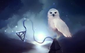 Wallpaper background, owl, panache, apofiss, Apophis