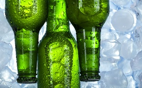 Picture beer, ice, three, bottle