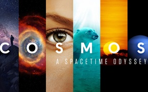 Picture fragments, Cosmos, A Spacetime Odyssey, documentary