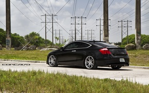 Picture grass, Honda, Accord, Coupe, wheel, Wheels, Concave, CW-S5