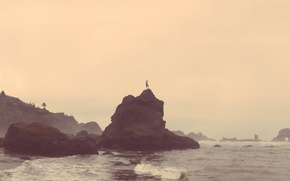 Picture wave, beach, fog, stone, male, rainy