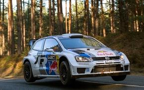 Picture volkswagen, rally, wrc, polo, 2013, Monte-Carlo