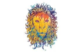 Picture color, background, paint, Leo