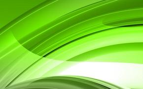 Picture light, green, Wallpaper, arc, line, saver, salad
