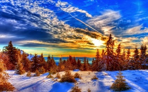 Picture winter, the sky, snow, trees, nature