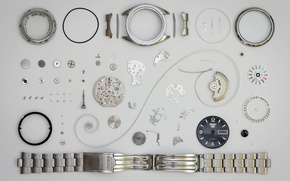 Picture watch, mechanism, details, SEIKO