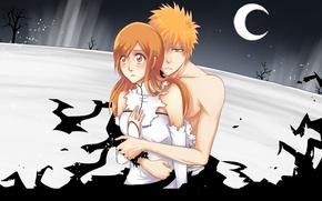 Picture Anime, Art, bleach, Inoue orihime, Kurosaki Ichigo