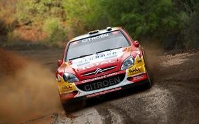 Picture Citroen, Citroen, Squirt, WRC, Rally, Rally, Xsara, Sordo