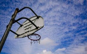 Picture sport, shield, Basketball Dreams
