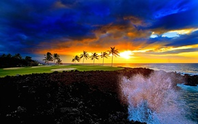 Picture HORIZON, The OCEAN, The SKY, CLOUDS, WAVE, SQUIRT, SUNSET, SHORE, DAWN, PALM trees