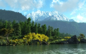 Picture forest, landscape, mountains, river