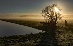 Wallpaper river, morning, fog