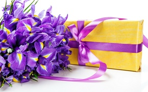 Picture flowers, box, gift, bouquet, tape, bow, irises, gift