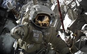 Picture Astronaut, Russia, Roscosmos