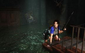 Picture girl, lara croft, tomb raider, eidos, harpoon