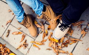 Picture autumn, leaves, shoes, sneakers, shoes