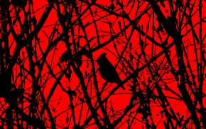 Picture forest, horror, red and black, black bird