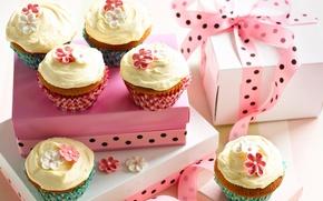 Wallpaper food, cake, cake, cream, dessert, food, sweet, cupcakes, cream, dessert, muffins, cupcakes
