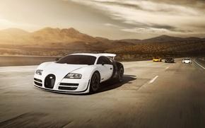 Picture McLaren, Lamborghini, Porsche, Bugatti, Veyron, white, cars, Carrera GT, yellow, MP4-12C, Murcielago, sportcars, exotic