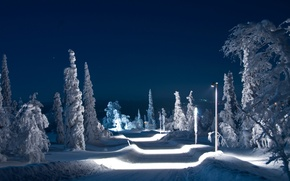 Picture winter, road, the sky, snow, trees, night, lights