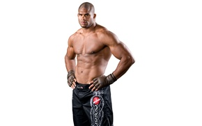 Picture fighter, MMA, mixed martial arts, Alistair Overeem, Alistair Overeem