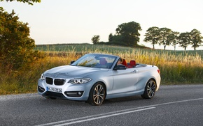 Picture road, auto, BMW, convertible, convertible, F23, 228i