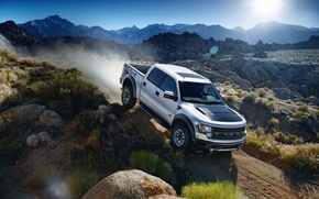 Picture auto, 2011 Ford F150 SVT Raptor