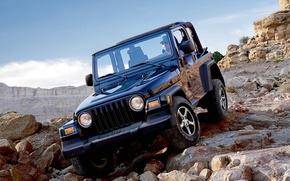 Picture sport, wrangler, Jeep
