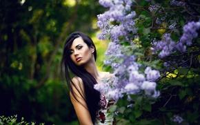 Picture portrait, makeup, lilac, Dasha
