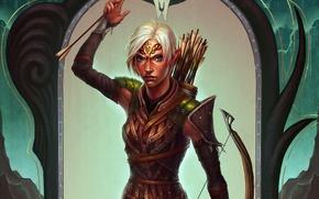 Picture elf, Archer, Dragon Age, fanart, Dragon Age: Inquisition, mahariel