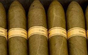 Picture brand, cigar, Cuba, tobacco