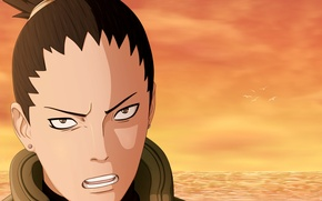 Wallpaper look, Naruto Shippuden, Shikamaru, Shikamaru