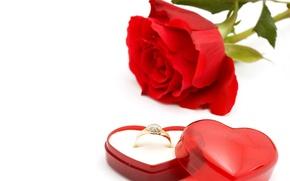 Picture romance, rose, ring, red, flowers, romantic, box, wedding, wedding