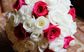 Picture flowers, roses, bouquet, pink, white