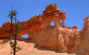 Picture the sky, tree, rocks, Utah, USA, bryce canyon